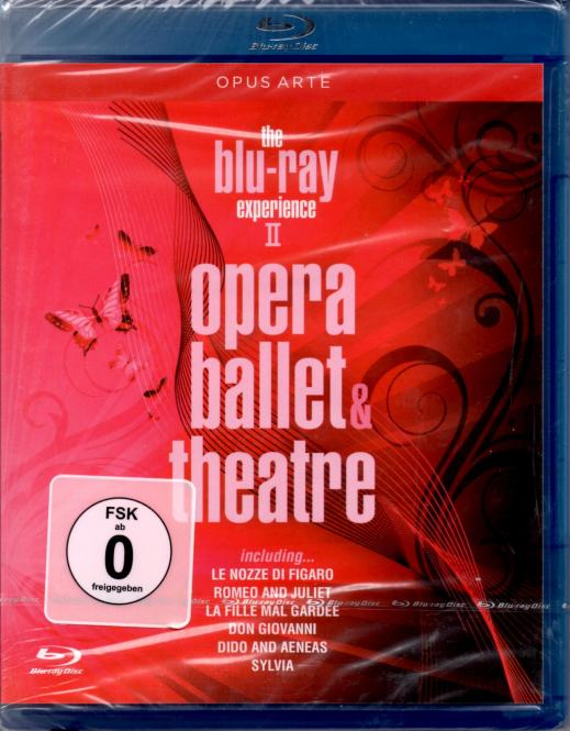 Opera Ballet & Theatre (Experience 2)