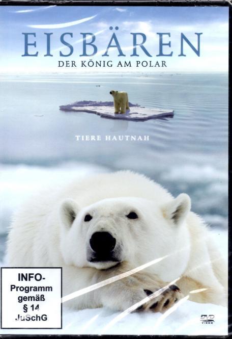 Eisbären - Der König Am Polar